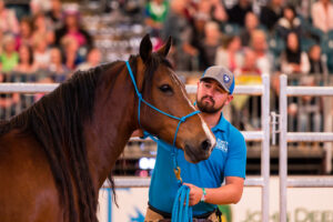 TWOTH competitor with his horse