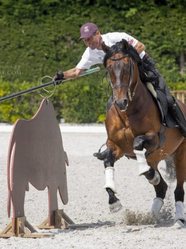 Competition_working_equitation