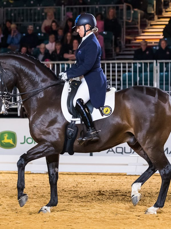 competition_dressage