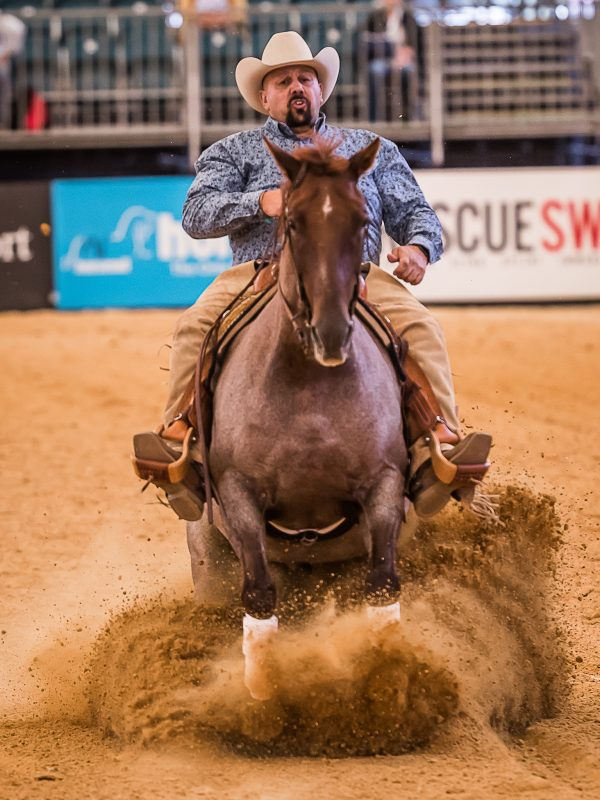 competition_reining