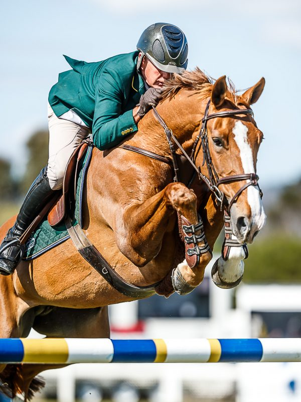 competition_showjumping