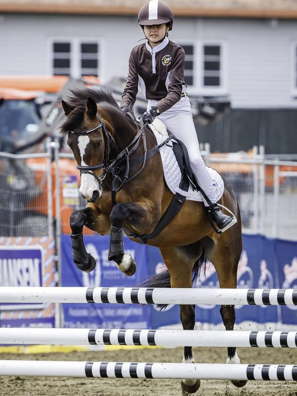 Jemma Brown rides Triple Star Toy Soldier during the NZPCA Team Challenge Jumping. 2019 Equitana Auckland. ASB Showgrounds. Auckland. New Zealand. Sunday 24 November. Copyright Photo: Libby Law Photography